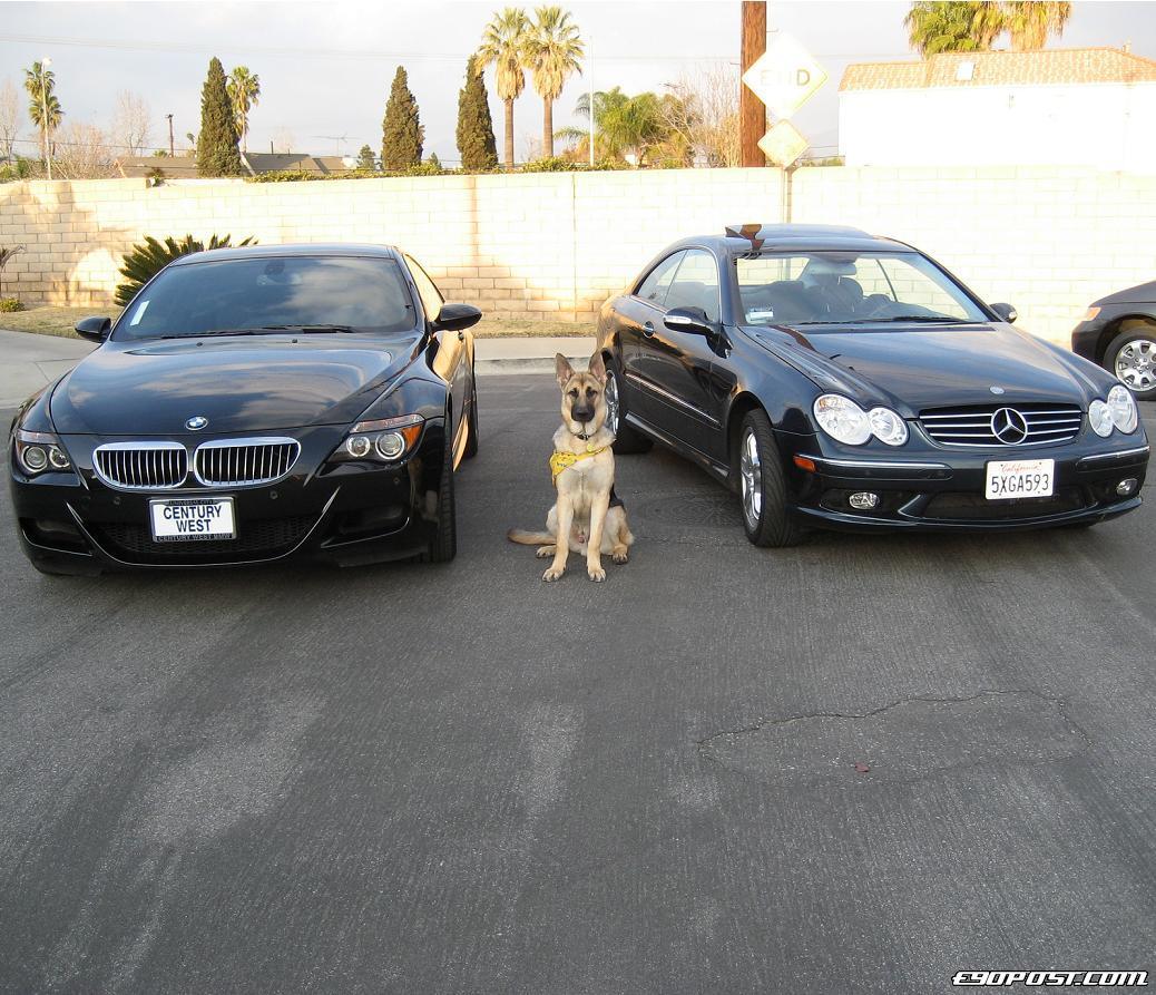 Yungmsix's 2006 BMW M6